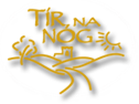 Tir na nÓg Irish Bar & Grill